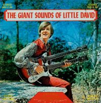 The Giant Sounds of Little David