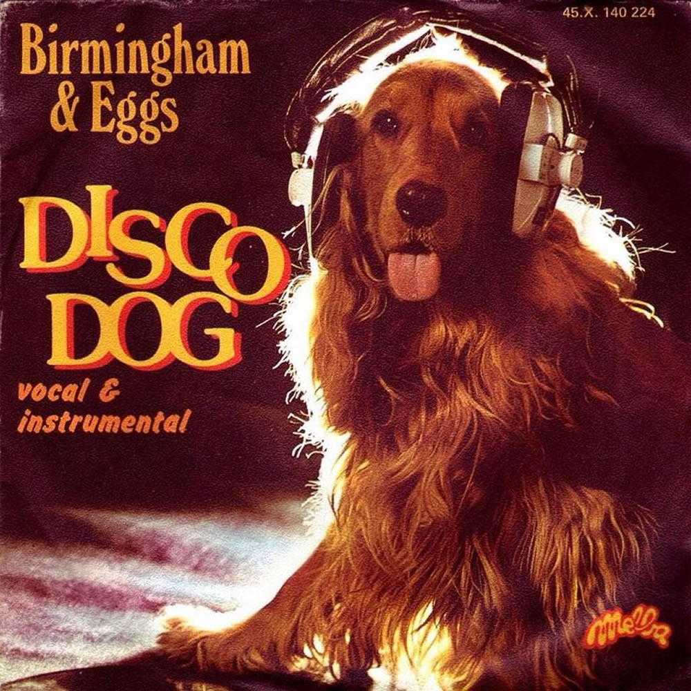 Birmingham & Eggs - Disco Dog
